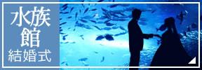 水族館で結婚式